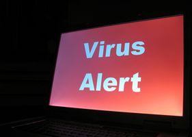 Hur man tar bort Sasser Virus