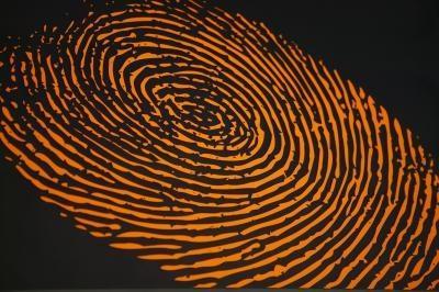 Hur man tar bort Dell D630 Fingeravtryck